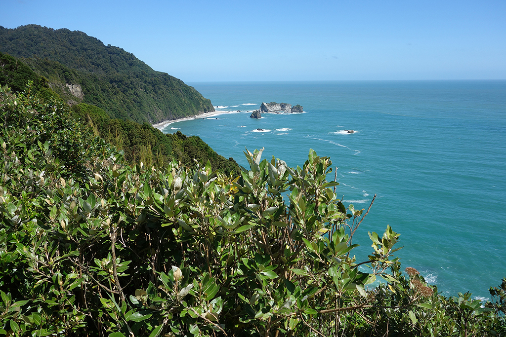 Bruce Bay Overlook, New Zealand