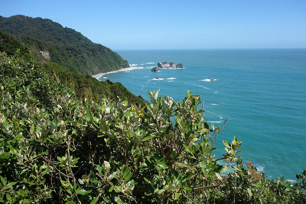 Bruce Bay Overlook, New Zealand