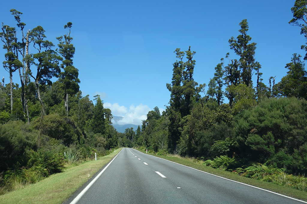 Driving to Haast Beach, New Zealand
