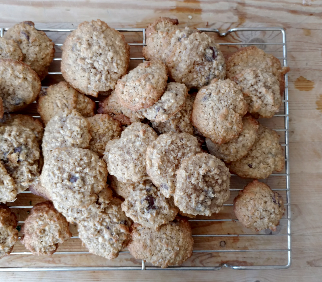 Meal train menu with lactation cookies