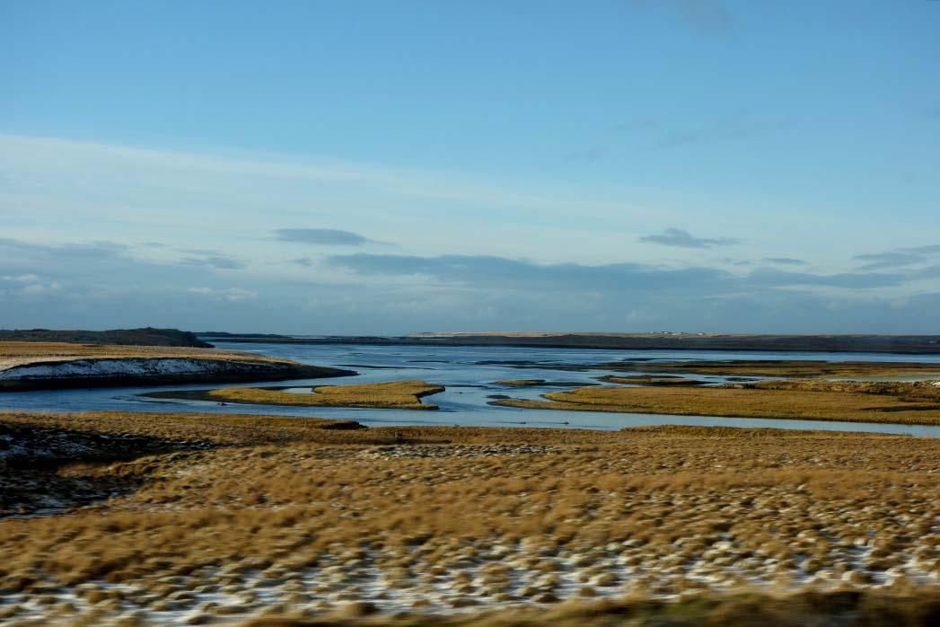 Estuary in Iceland